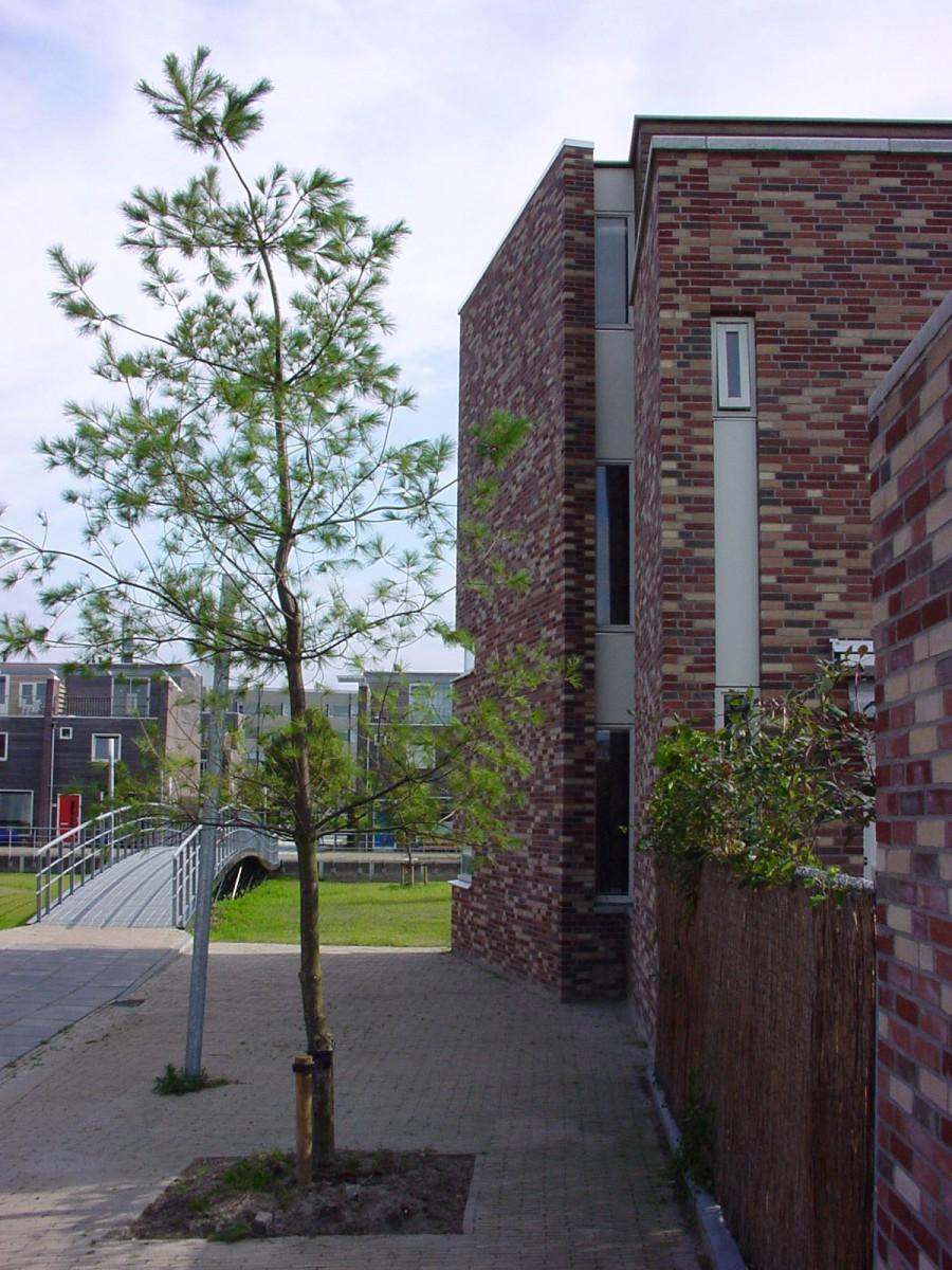 Aas Groningen De Meeuwen Groningen